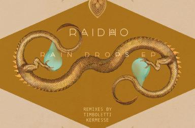 SOL071 - Raidho - Rain Drops EP