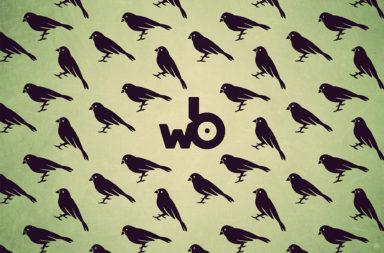 WBR016 - Rhymos - Hi Sparrow